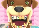 Animal Toothcare