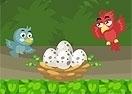 Bird Jungle Rescue
