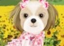 Dog Models 2