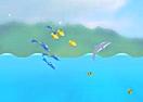 Dolphin Olympics