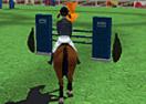 Hipismo: Corrida de Cavalos