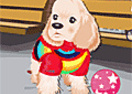 Moda para cães 2