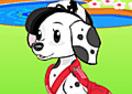 Moda para cães!