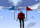 Ski-Slalom